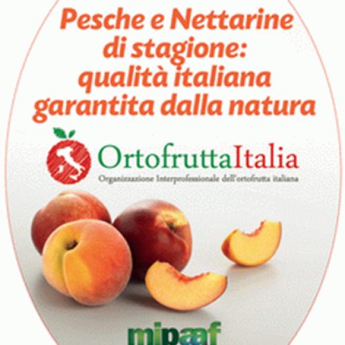 AL VIA LA CAMPAGNA DI PROMOZIONE E COMUNICAZIONE ISTITUZIONALE PER LE PESCHE E NETTARINE ITALIANE
