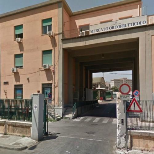 BOOM DI FURTI AL MERCATO ORTOFRUTTICOLO DI PALERMO, L'ALLARME DEI COMMISSIONARI