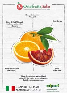 arance lato b