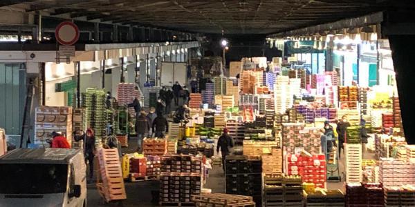 mercato-ortofrutticolo-bergamo-galleria-az